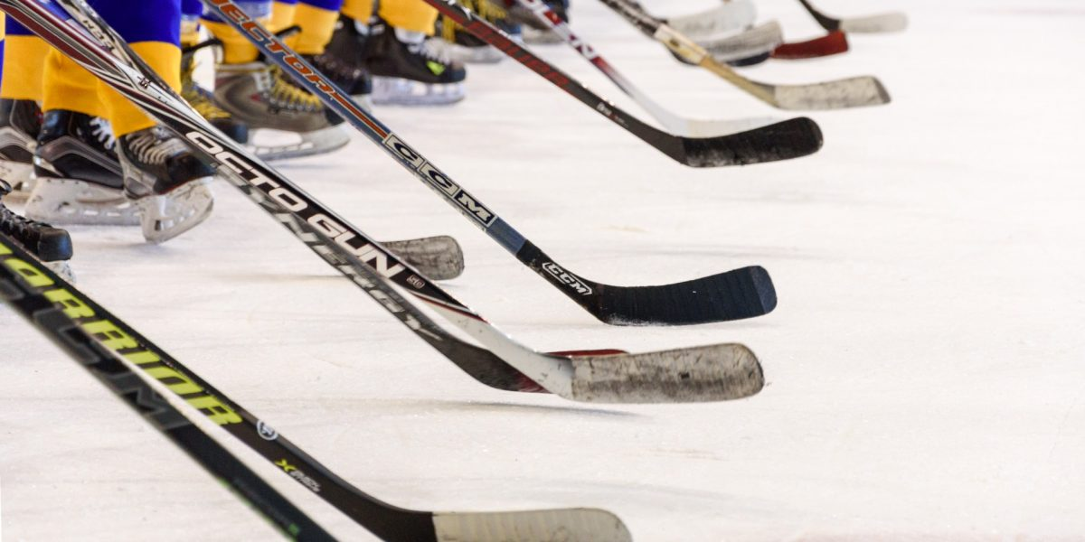 Season review for 2018-2019 fantasy hockey season